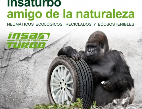ESTE VERANO ELIGE INSATURBO EN ECOLOGICAL DRIVE Y AMA LA NATURALEZA